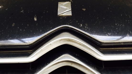 lakbeschadiging insecten eco green auto clean